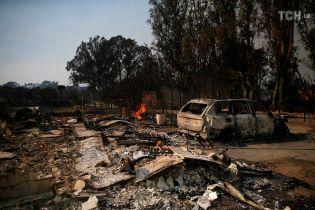 Кількість жертв унаслідок лісових пожеж у Каліфорнії зросла до 31 людини