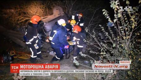 В Николаеве автомобиль слетел с дороги и врезался в дерево