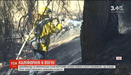 Зросла кількість жертв лісових пожеж у Каліфорнії