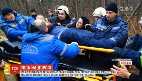 Авто с работниками зоны отчуждения насмерть сбило лося