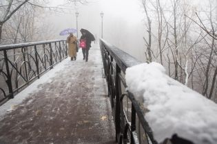 Снігу насипле до 6 сантиметрів - голова ДСНС