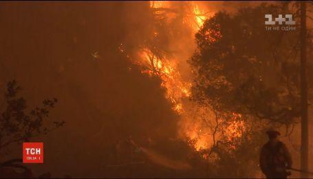 Трамп объявил Калифорнию зоной стихийного бедствия из-за масштабных пожаров