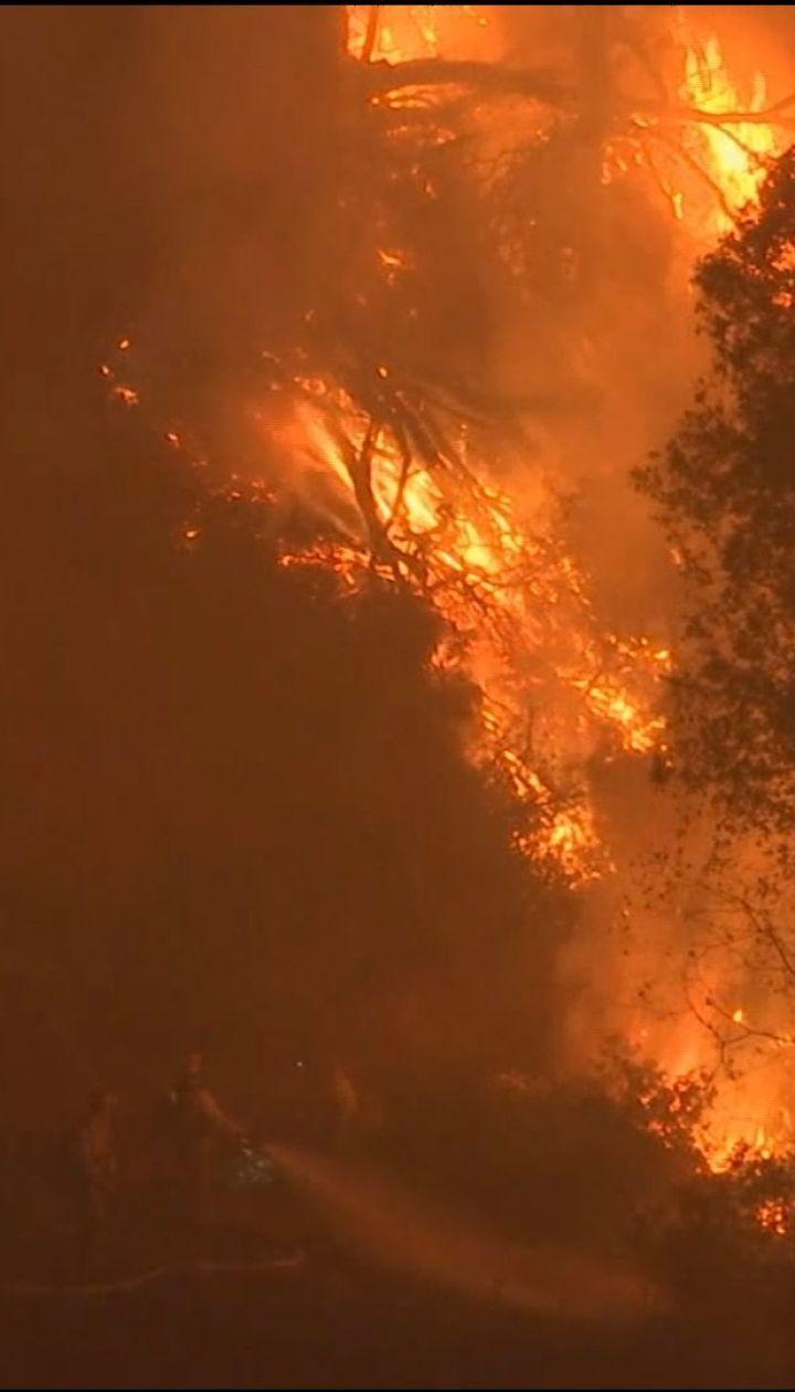 Трамп оголосив Каліфорнію зоною стихійного лиха через масштабні пожежі