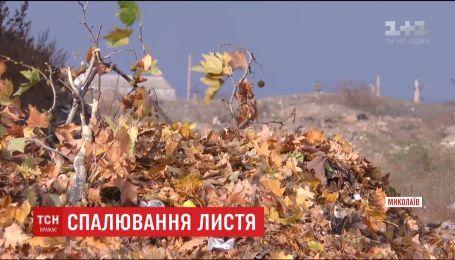 Коммунальщики Николаева призывают горожан не палить листья
