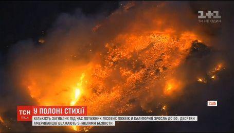 В Калифорнии возросло число погибших в результате лесных пожаров