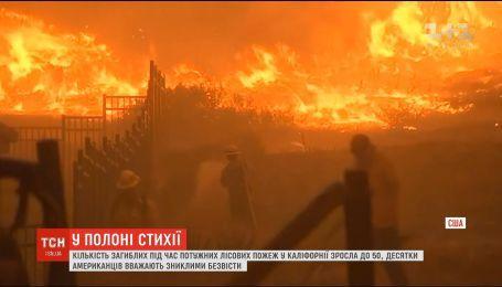 Лісові пожежі у Каліфорнії стали найбільшими за кількістю жертв за всю історію штату