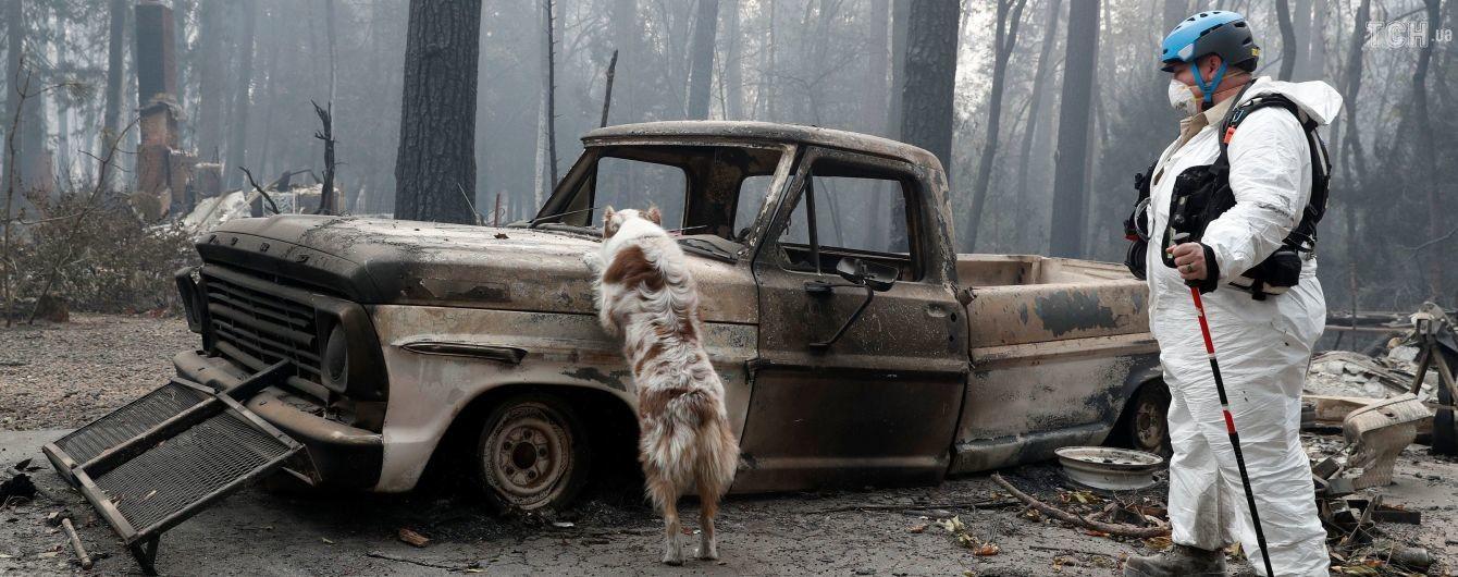 Кількість жертв від масштабних лісових пожеж у Каліфорнії сягнула 59 осіб