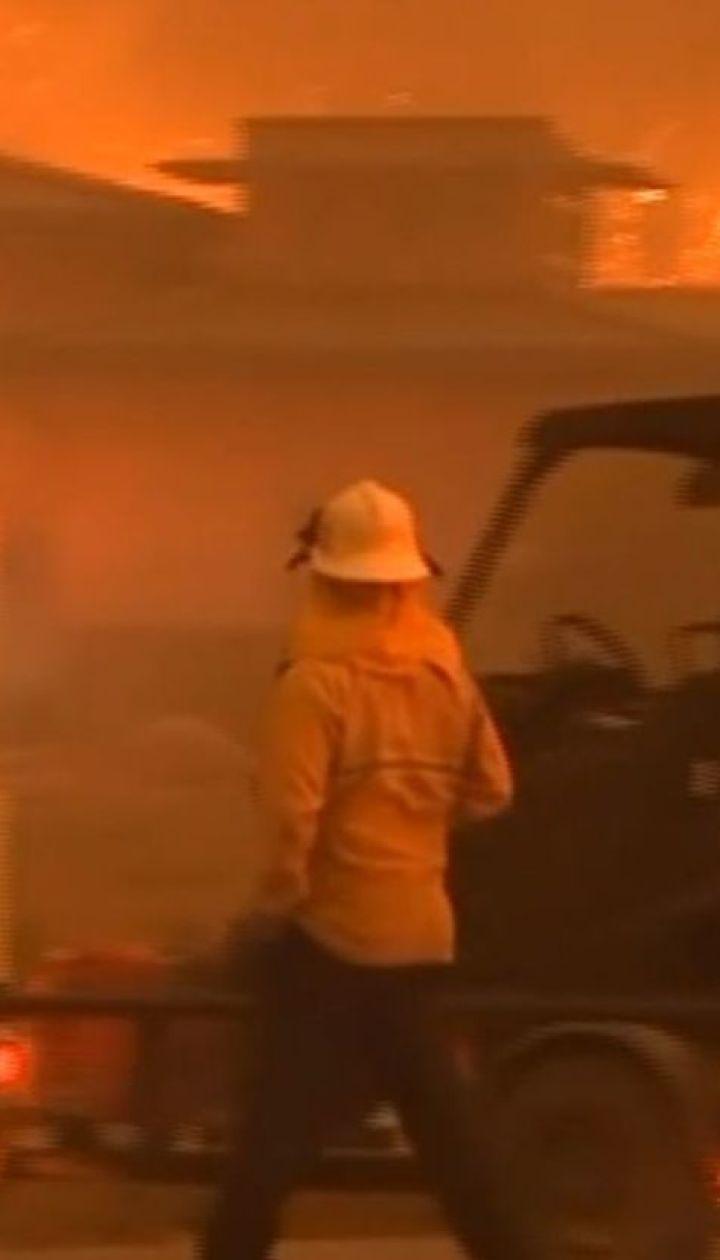 Зросла кількість жертв від смертоносних пожеж у Каліфорнії