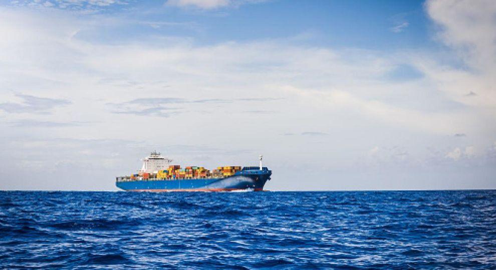 Норвезька компанія буде видобувати паливо для круїзних лайнерів з мертвої риби