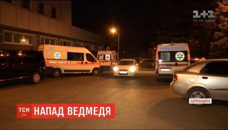 На Харьковщине медведь напал на женщину