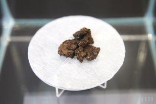 Унікальна знахідка: у Центральному державному архіві знайшли хліб, який їли українці у Голодомор