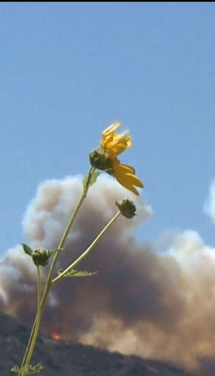 Десятки людей стали жертвами лісових пожеж у Каліфорнії
