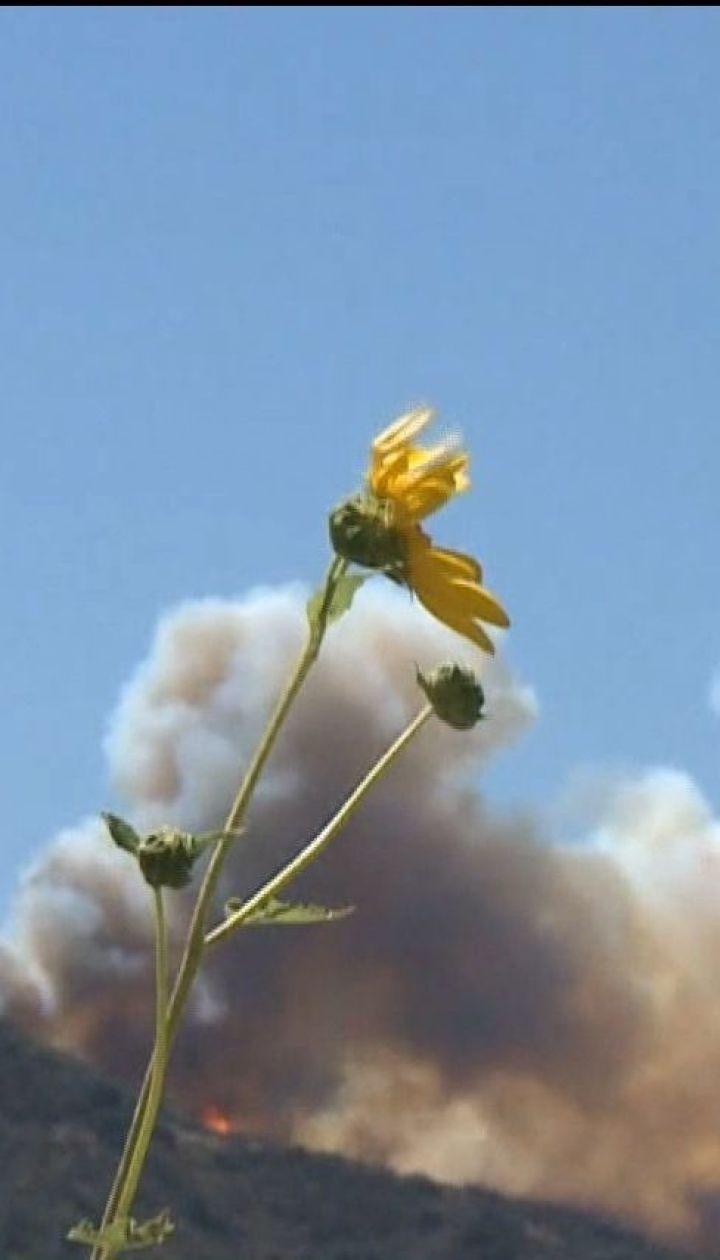 Десятки человек стали жертвами лесных пожаров в Калифорнии