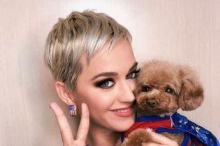Відому американську співачку визнано найбагатшою виконавицею року