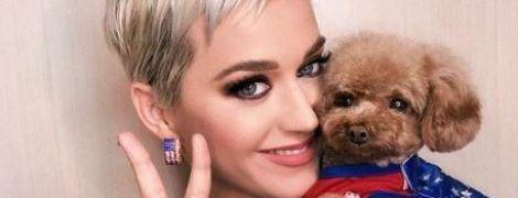 Известную американскую певицу признан самой богатой исполнительницей года