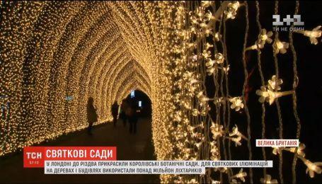 В Лондоне Королевские ботанические сады украсили к Рождеству