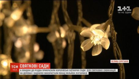 Праздничное настроение. Королевские ботанические сады в Лондоне украсили к Рождеству