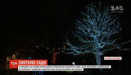К Рождеству в ботаническом саду Лондона засияло более миллиона огоньков