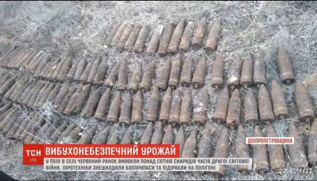 Понад сотню артснарядів часів Другої світової війни виявили на Дніпропетровщині