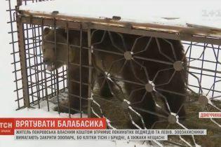 """На Черниговщине медведи по непонятным причинам """"отказались"""" от зимней спячки"""