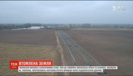 Уставшая земля. Черноземы Украины в критическом состоянии - экологи