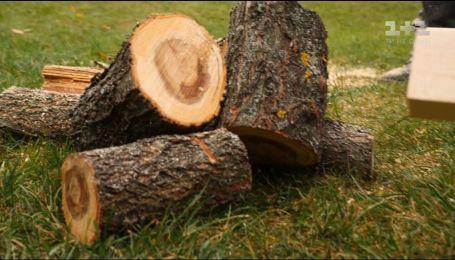 Правила заготівлі дрів на зиму – Осінь на дачі