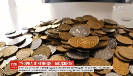 Бюджет-2019: сколько каждый украинец заплатит в государственную казну