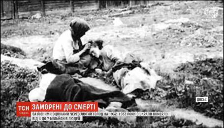 МИД РФ отказывается признать Голодомор 1932-2933 годов геноцидом украинского народа