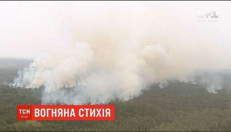 Схід Австралії потерпає від масштабних лісових пожеж