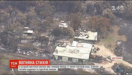 Масштабные пожары в Австралии: огонь уничтожил более 17 тысяч гектаров леса