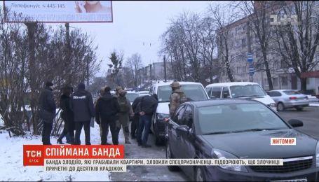 В Житомире на горячем задержали банду, которая грабила квартиры