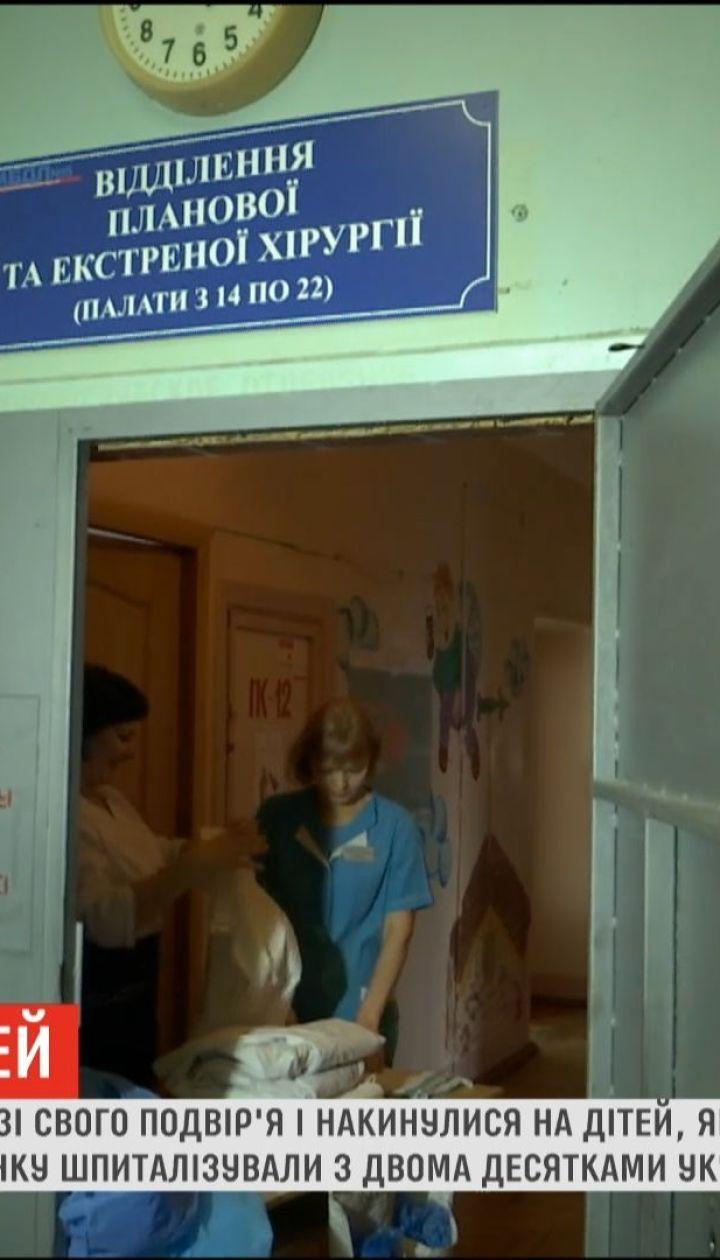 В Запорожье собаки чуть не загрызли 6-летнюю девочку