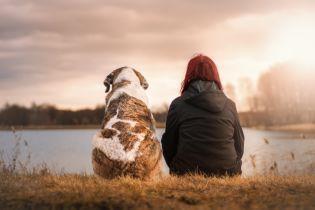 Супрун рассказала о пользе домашних животных