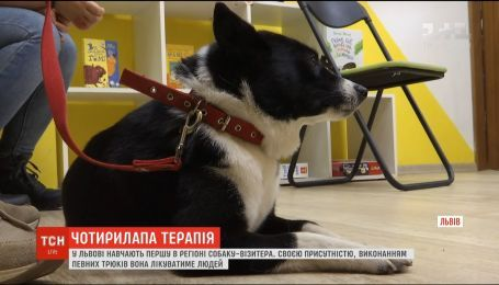 Во Львове учат первую в регионе собаку-визитера