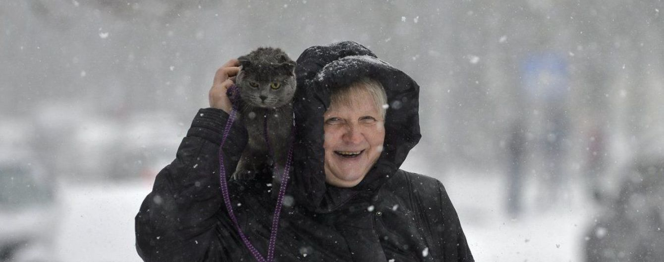 Жарти юзерів про потужний снігопад в Україні та зимовий ролик з унікальним оленем-альбіносом. Тренди Мережі