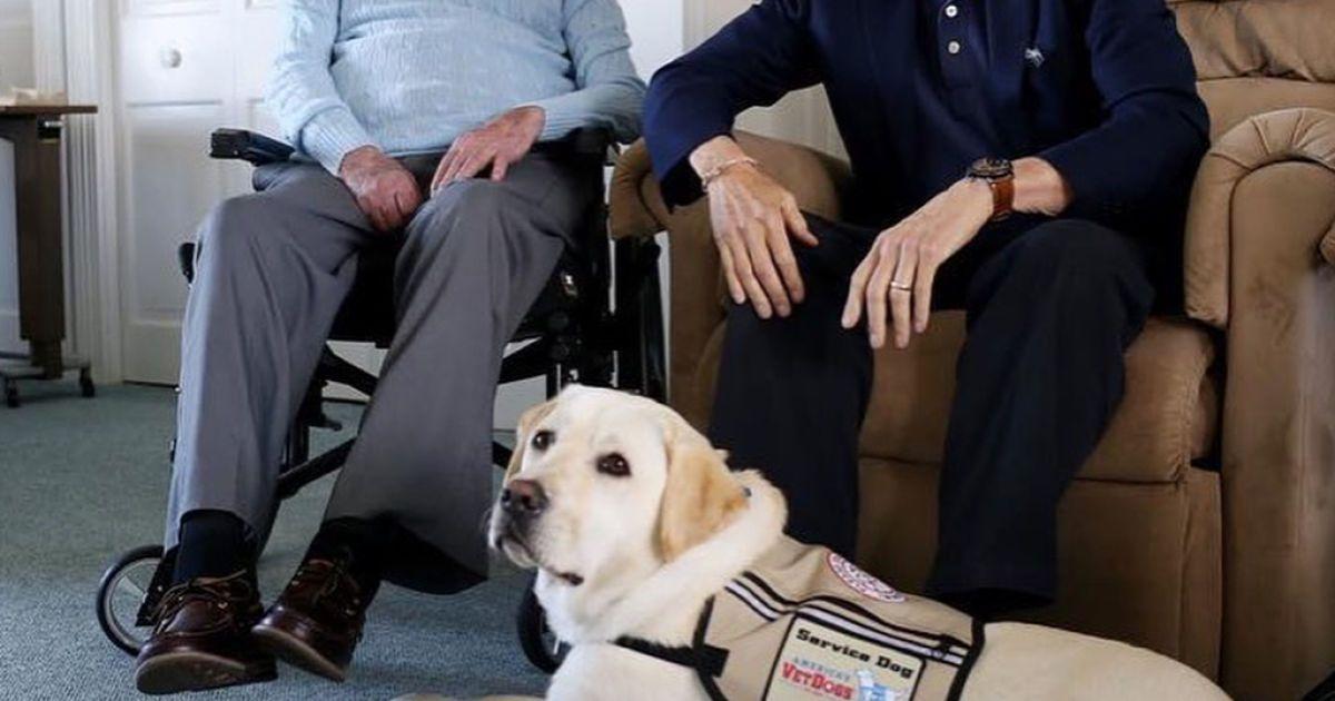 Джордж Буш-старший, Білл Клінтон та Саллі