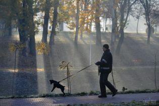 """Столична """"осінь контрастів"""" побила одразу 8 температурних рекордів"""