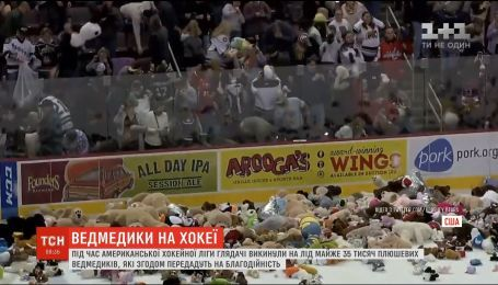 В США на хоккейном матче зрители выбросили на лед 35 тысяч плюшевых мишек