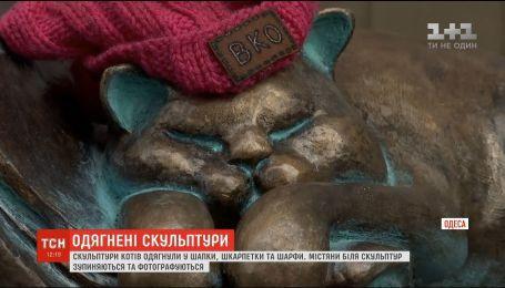 Скульптури котів в Одесі після першого снігу одягнули в теплий одяг