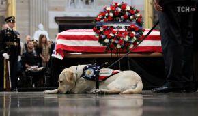 Політики, військові, індіанці і собака: у Капітолії прощаються із Джорджем Бушем-старшим