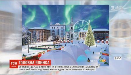 На Софийской площади установят 25-метровое дерево с живой хвои и искусственных веток