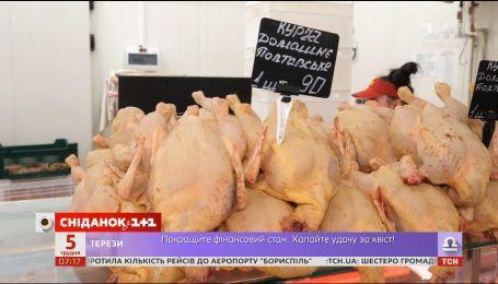 Цены на курятину, курс валют и долг за коммуналку - экономические новости