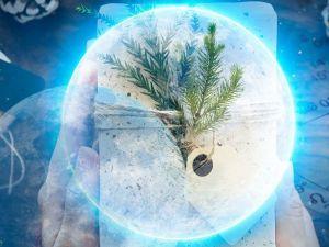 Магия первого лунного дня в декабре 2018 года