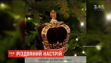 Игрушки в виде корон и карет: в Букингемском дворце установили живые елки