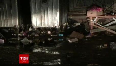 Сотни крыс рыщут по улицам Киева