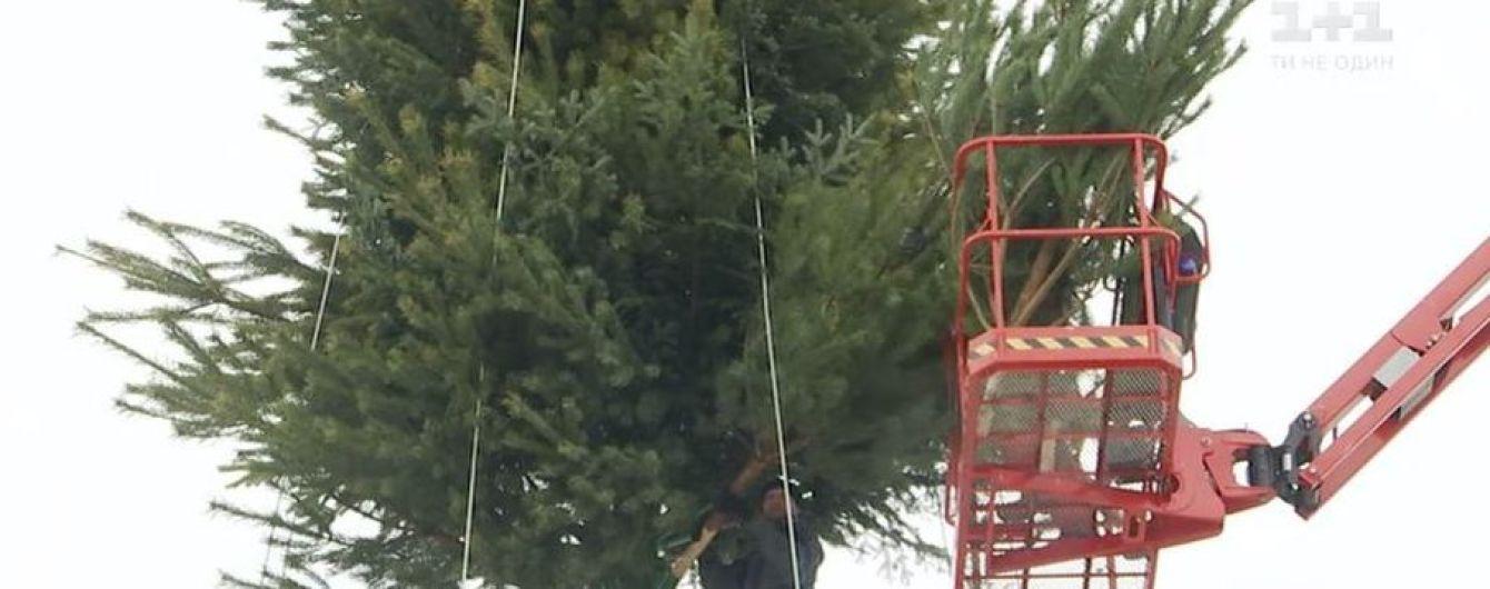 На Софийской площади собирают главную елку страны