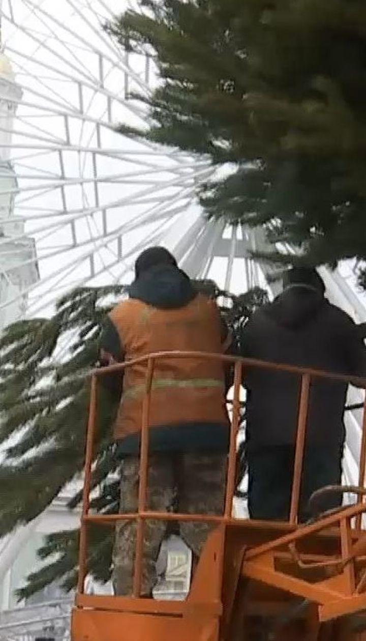 Головну ялинку країни цьогоріч змонтують з 300 дерев
