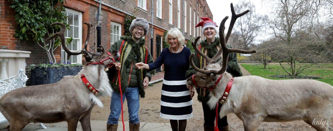 Камілла, діти і олені: герцогиня Корнуольська прикрасила Кларенс-хаус до Різдва