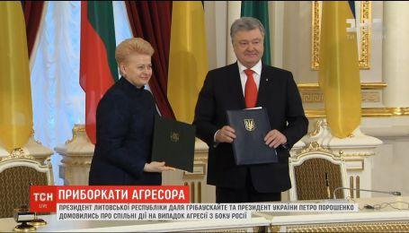 Порошенко та Грібаускайте домовились про спільні дії на випадок агресії з боку Росії