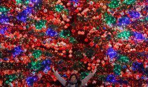 Тисячі гірлянд, тонни м'яса та ріки глінтвейну: у Берліні відкрилися різдвяні ярмарки